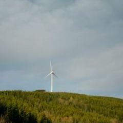 Dokie-Wind-Farm-6.jpg